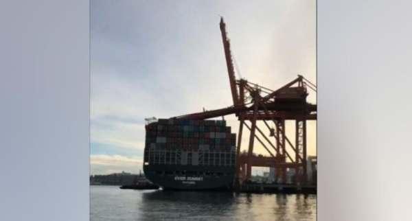crane-port-of-vancouver
